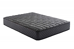 """ENLIVEN 2-SIDED PLUSH 12"""" MATTRESS"""